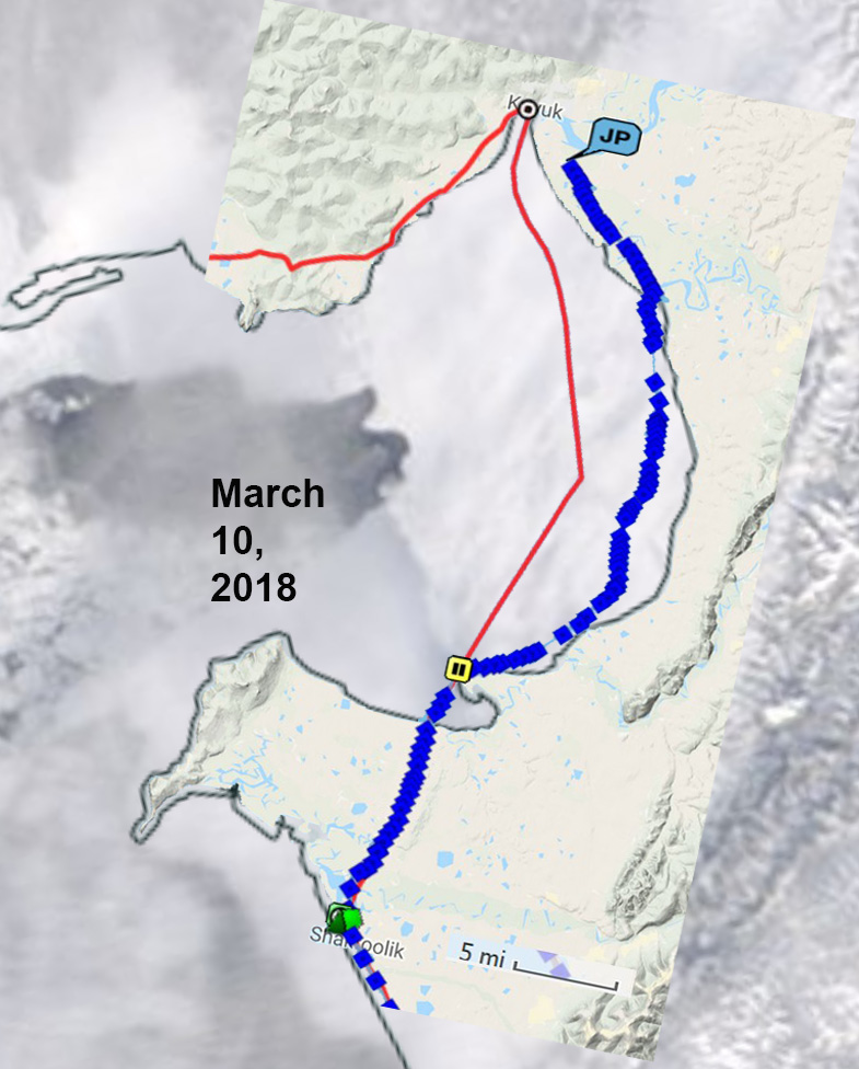Iditarod Trail Invitational 2018-jay-track-feb-10-2018-ice.jpg