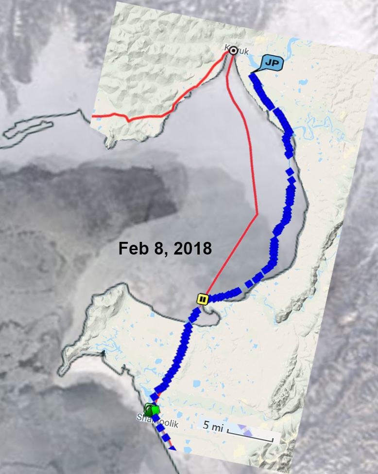 Iditarod Trail Invitational 2018-jay-track-feb-8-2018-ice.jpg