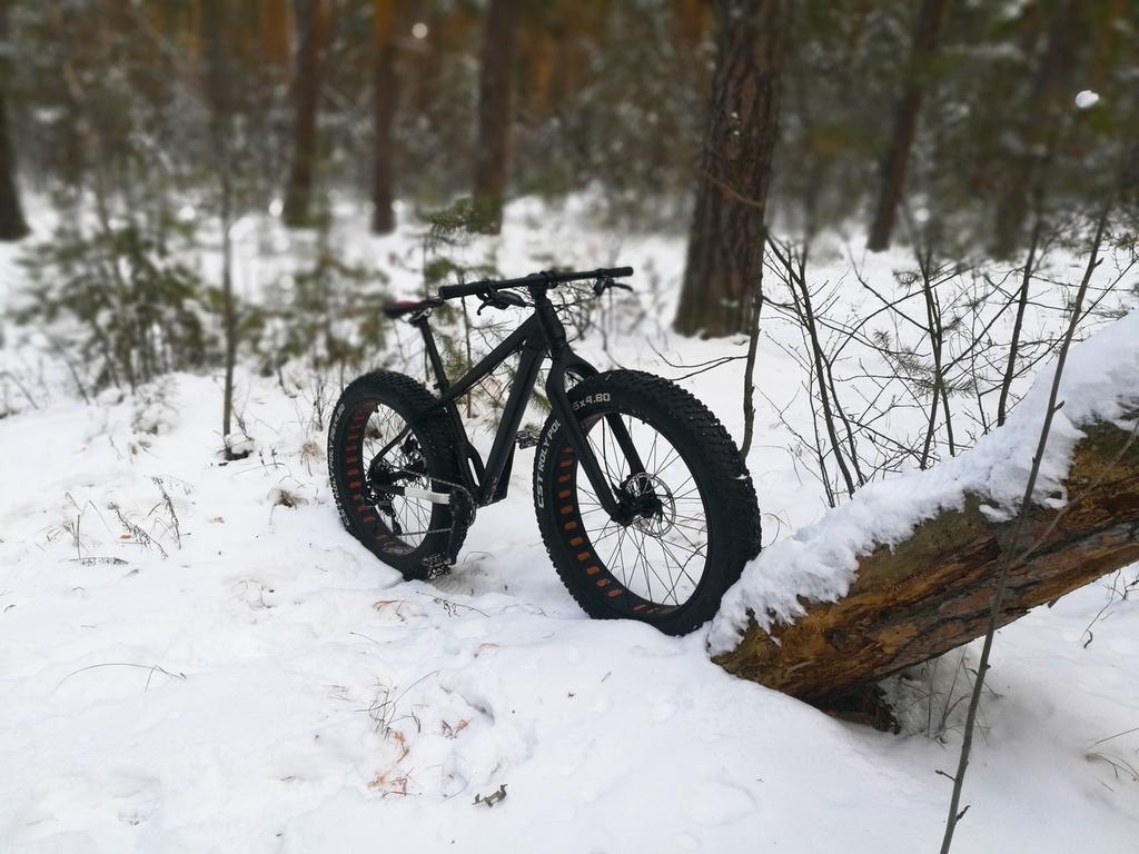 Global Fat-Bike Day. Congratulations from the Russian fat-bikers community.-jb5yl0mjyb8.jpg