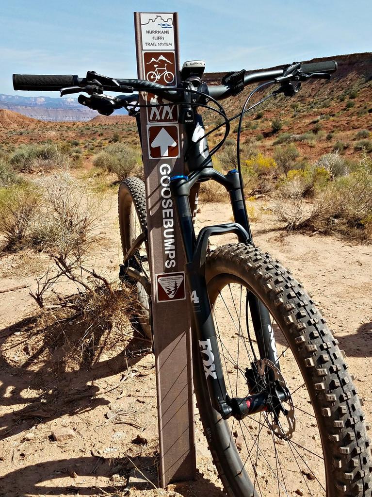 Bike + trail marker pics-jem.jpg