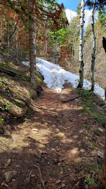 Park City trail conditions..-jgtptf1y_vpvdemh0brlo8yp2nv-fl7cmyputofham-1152x2048.jpg