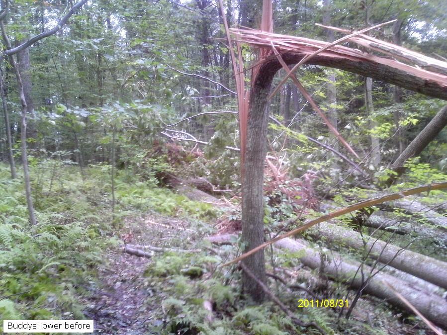 Moon Lake Trail damage reports here-jimag0083_900x900.jpg
