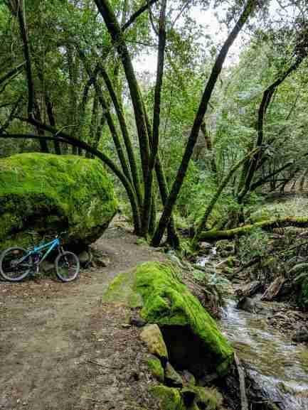Feb 11-14, 2019 Weekly Ride and Trail Report-jnt_bridge2.jpg