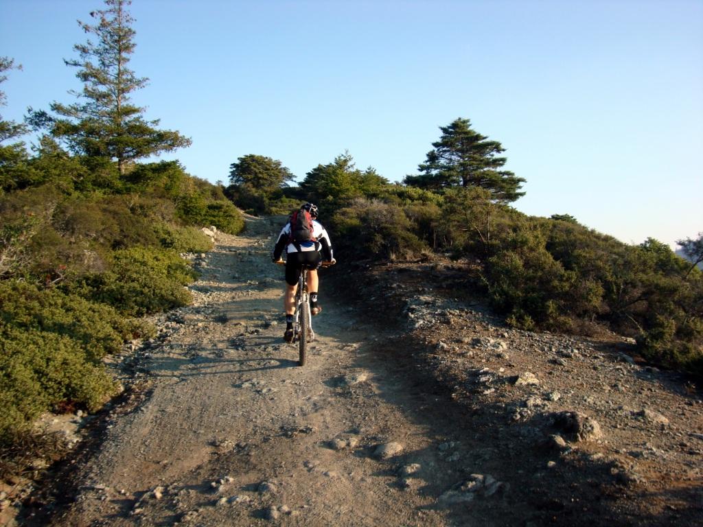 Shakedown. Marin.-josh-pine-mnt-climb-compressed.jpg