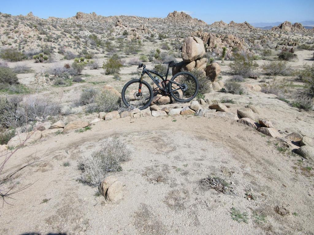Weekday Ride Report February 27 - March 2-joshua-tree-palm-desert-feb-2017-014.jpg