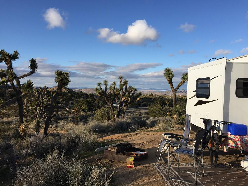 Weekday Ride Report February 27 - March 2-joshua-tree-palm-desert-feb-2017-022.jpg