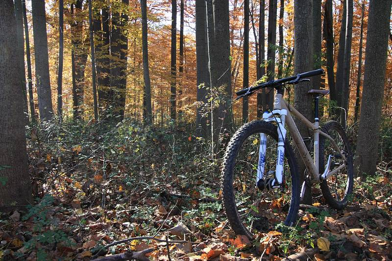 2011 Fall Colors (with Bike)-js800_img_5180.jpg