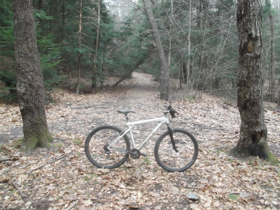Saturday, 11/24/12...The Switchback Trail in Jim Thorpe-jt-11-24-12-014_900x900.jpg