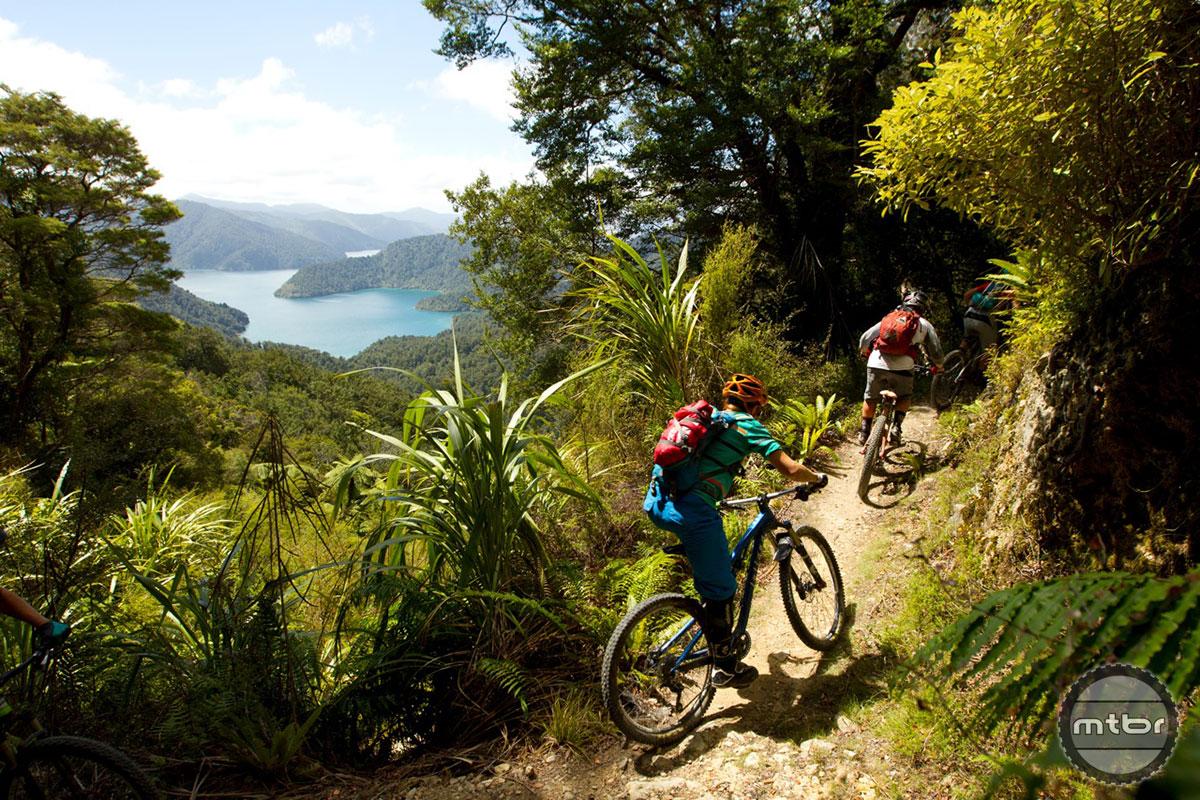 Juliana Bikes Lakeview