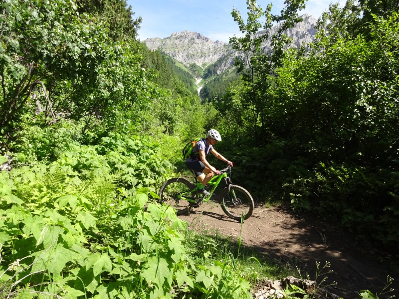 TR - 2017 Canada roadtrip with MT appetizer and chaser (x-post from the AZ forum)-july-10_fernie2.jpg