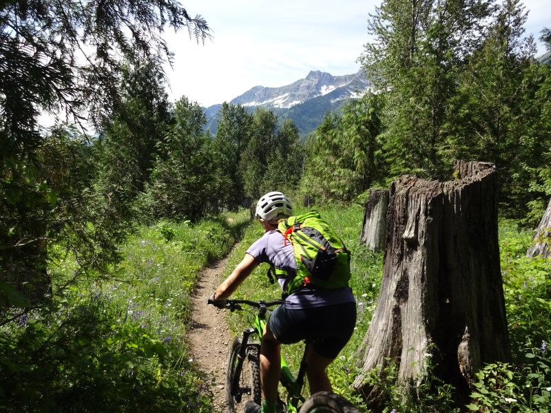 TR - 2017 Canada roadtrip with MT appetizer and chaser (x-post from the AZ forum)-july-10_fernie3.jpg