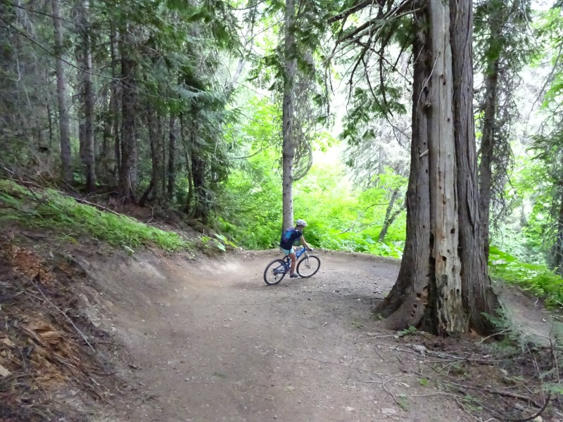 TR - 2017 Canada roadtrip with MT appetizer and chaser (x-post from the AZ forum)-july-10_fernie6.jpg
