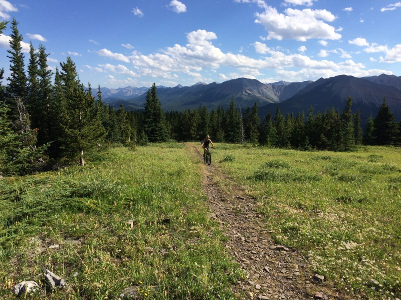 TR - 2017 Canada roadtrip with MT appetizer and chaser (x-post from the AZ forum)-july-13_jp-cox-hill2.jpg