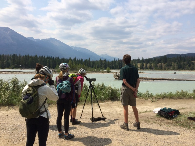 TR - 2017 Canada roadtrip with MT appetizer and chaser (x-post from the AZ forum)-july-17_trail-7.jpg