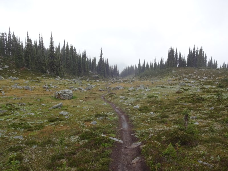 TR - 2017 Canada roadtrip with MT appetizer and chaser (x-post from the AZ forum)-july-22_martha4.jpg