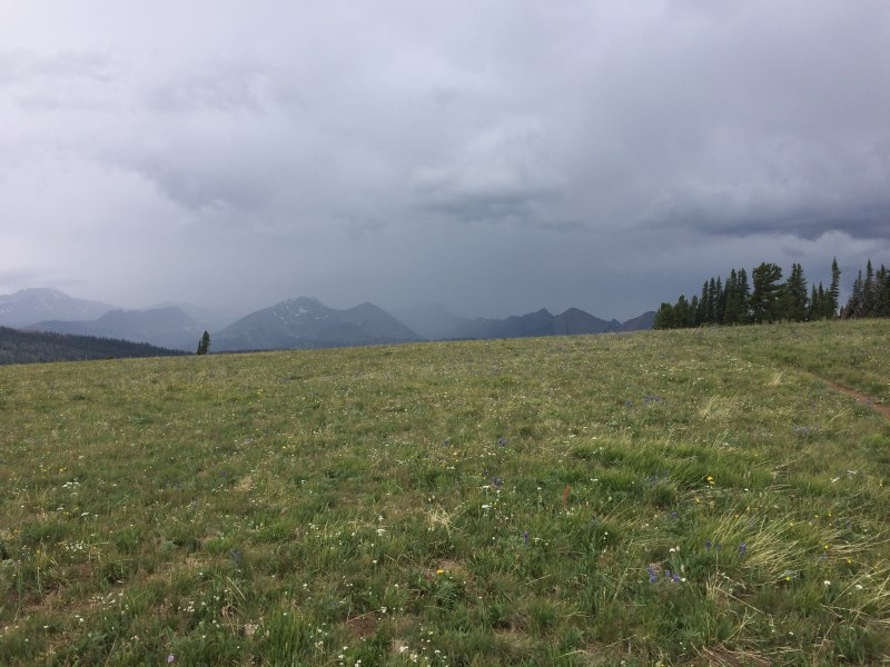TR - 2017 Canada roadtrip with MT appetizer and chaser (x-post from the AZ forum)-july-26_pica11.jpg