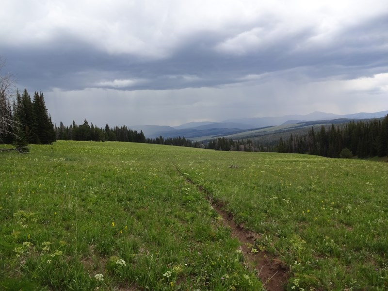 TR - 2017 Canada roadtrip with MT appetizer and chaser (x-post from the AZ forum)-july-26_pica9.jpg