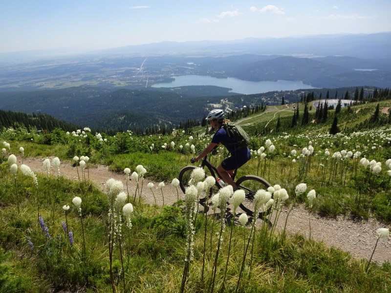 TR - 2017 Canada roadtrip with MT appetizer and chaser (x-post from the AZ forum)-july-8_whitefish2.jpg