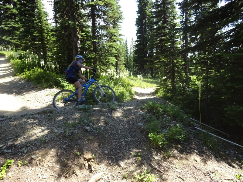 TR - 2017 Canada roadtrip with MT appetizer and chaser (x-post from the AZ forum)-july-8_whitefish3.jpg