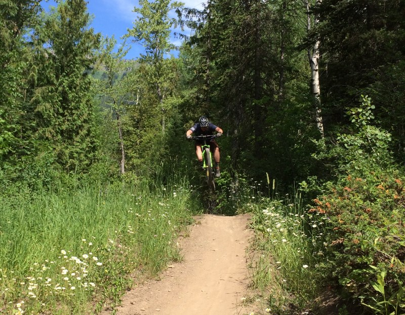 TR - 2017 Canada roadtrip with MT appetizer and chaser (x-post from the AZ forum)-july-9_fernie2.jpg