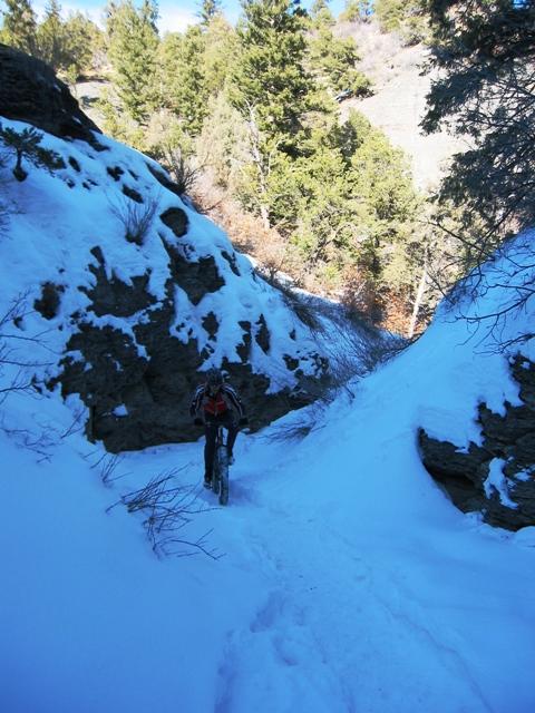 4 Fatties in Durango-k-slimeg.jpg