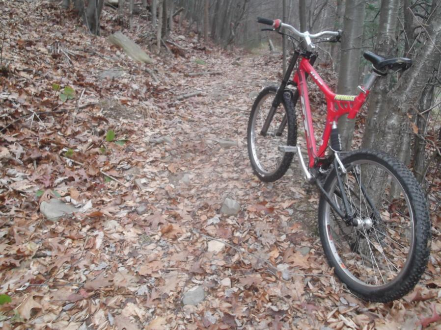 Today on the Trails...-kacb-11-2-12-002_900x900.jpg