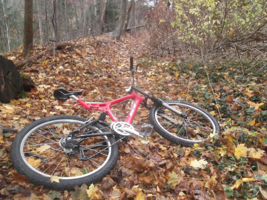 Today on the Trails...-kacb-11-2-12-004_900x900.jpg