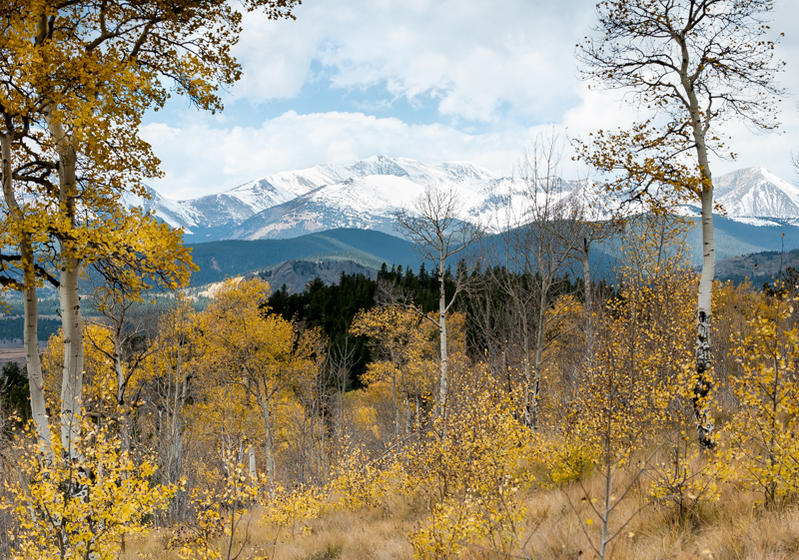 how many you are carrying DSLR's on rides and how are you doing it?-kanosha-trail-smaller-1-2.jpg