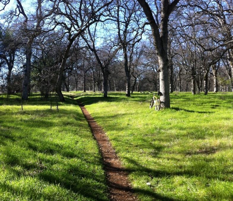 Trail Pics-ket.jpg
