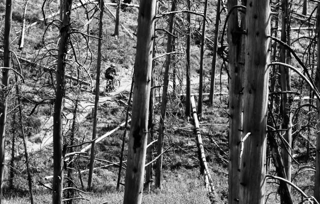 Black And White Photos Post 'Em-ketchum_06_030a_quick_e-mail_view.jpg