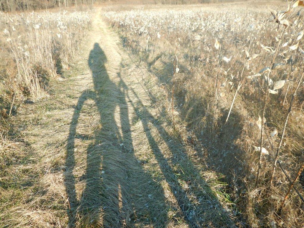 Local Trail Rides-khhwp7o.jpg
