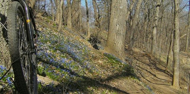 Spring has Sprung! - ride photos-kicx3280.jpg