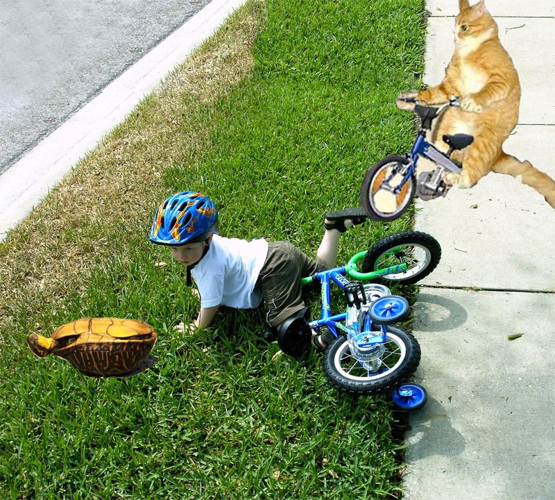 lol.. i jumped over a kid today-kid_fall_off_bike1.jpg