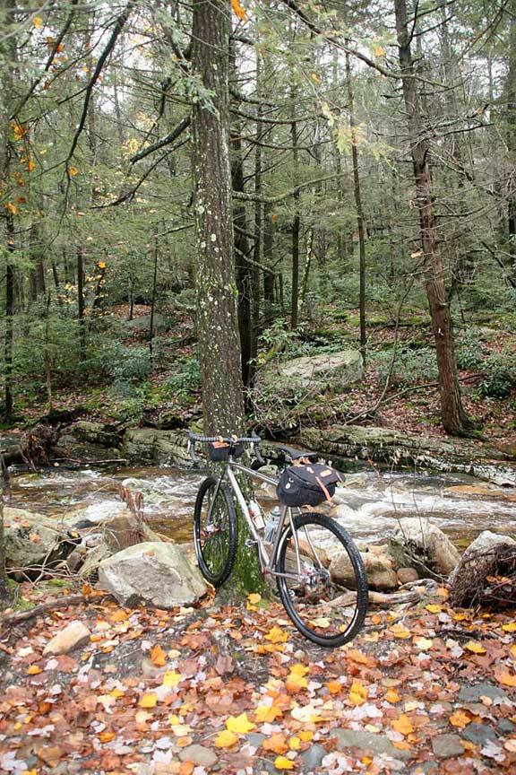 29ers In The Fall-kish-3.jpg