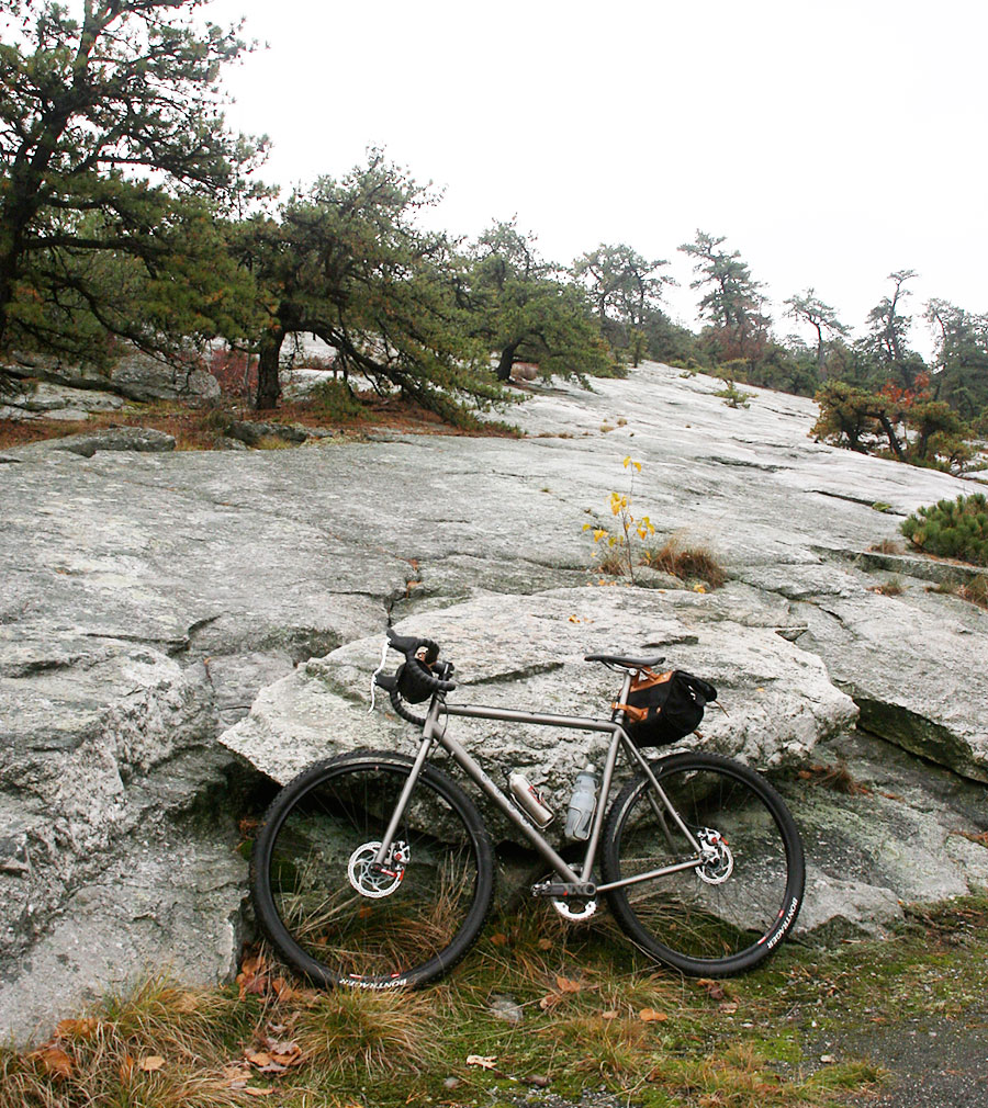 29ers In The Fall-kish1.jpg
