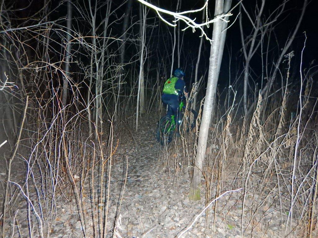 Local Trail Rides-kjtbk9n.jpg
