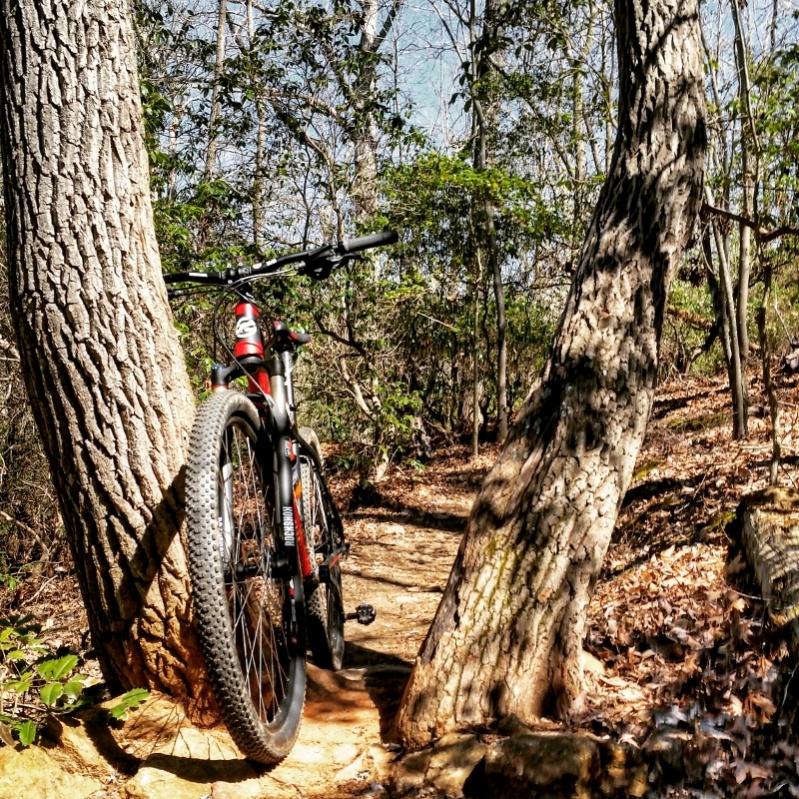 Charlotte area trails-kona4-800x800-.jpg