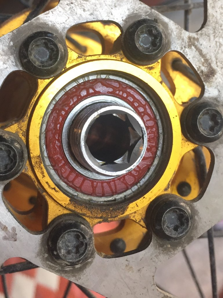 Koozer hubs, 72 POE @ under -koozer5-500km.jpg