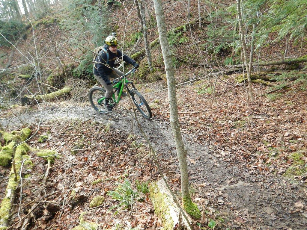 Local Trail Rides-ksgfhjv.jpg