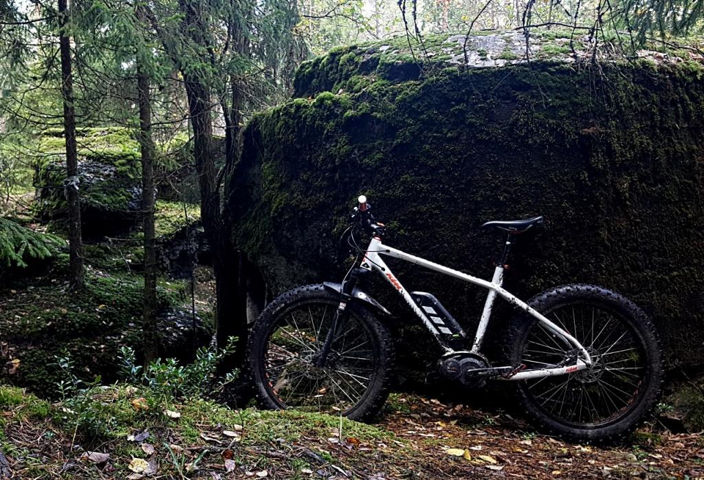 E-Bike Pic Thread-ktm_macina_freeze.jpg