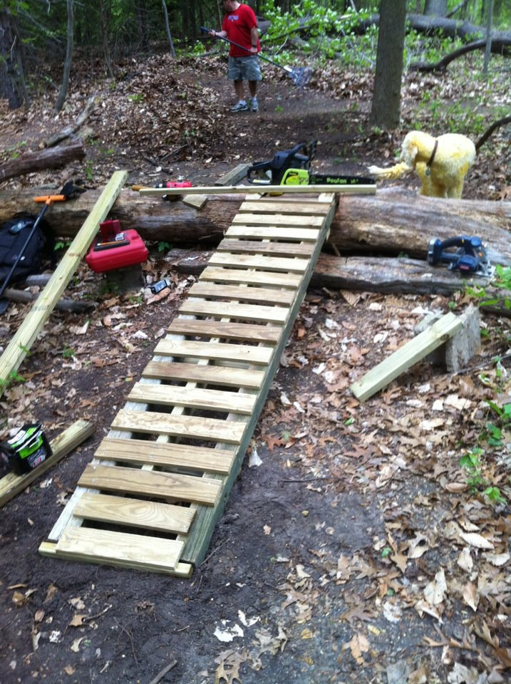 Log ramps: Good? Bad? And how best to build them?-ladder.jpg