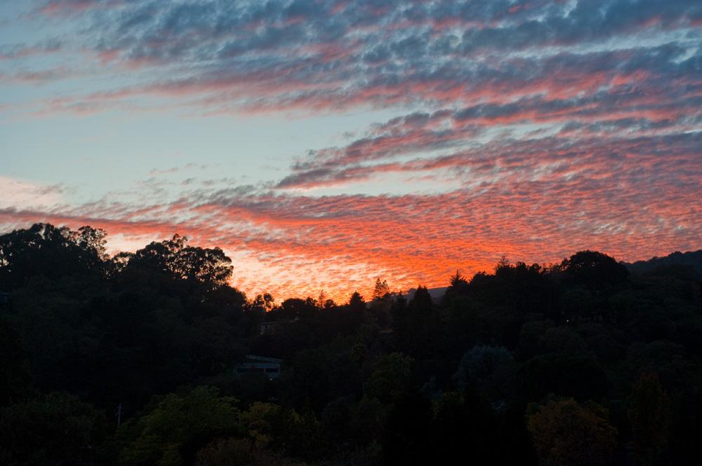 Assignment: Norcal Fall Photos-lafayette-sunset-nov-18-2010.jpg