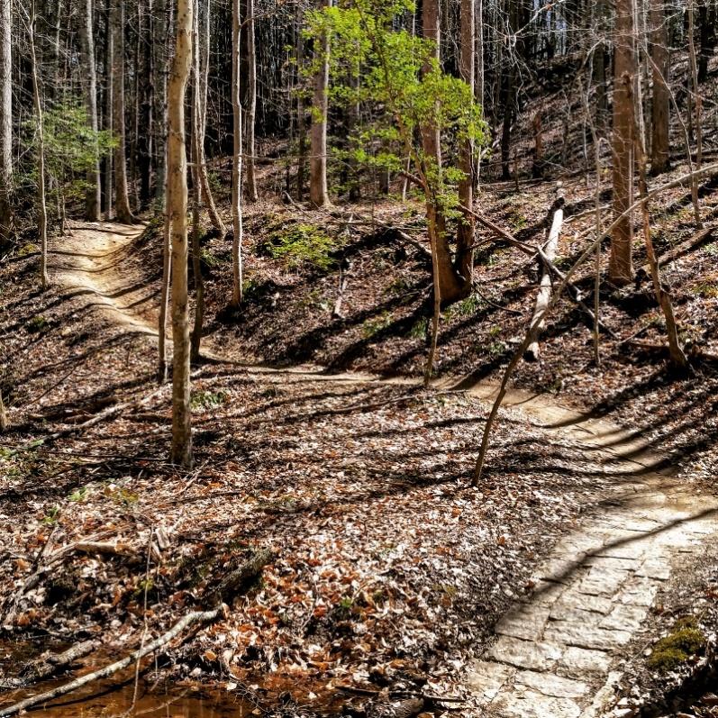 Charlotte area trails-lakenormansp-800x800-.jpg
