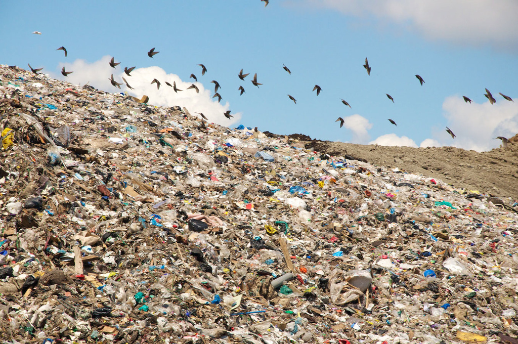county is not taking plastic recycling, what does OC say i should do?-landfill.jpg