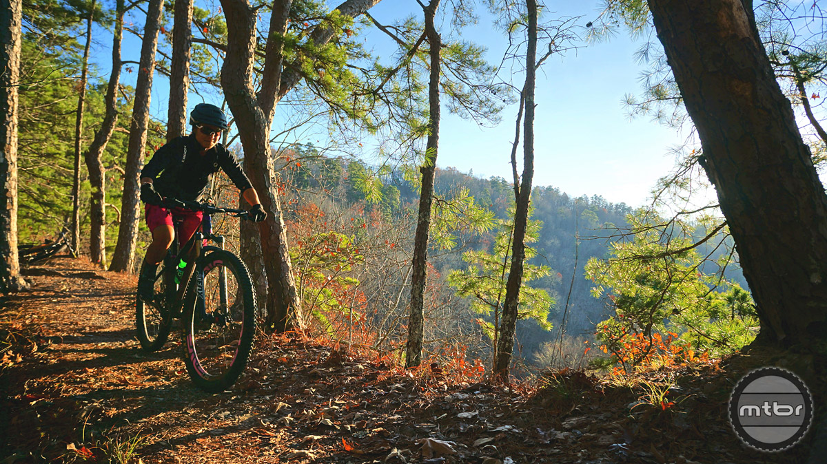 Spend sometime wandering the Ouachita's and you will quickly realize why this place has become a true mountain bike destination.