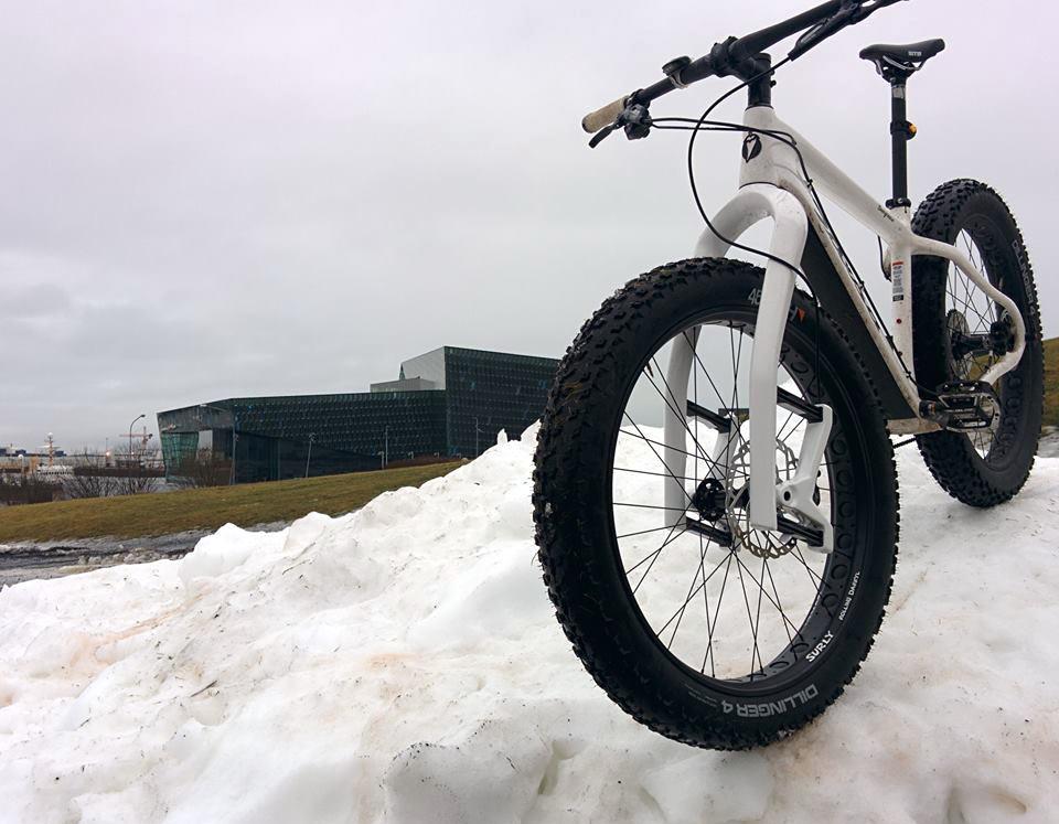 27.5+ Tires-lauf-fat-bike-fork-leaf-spring-suspension.jpg