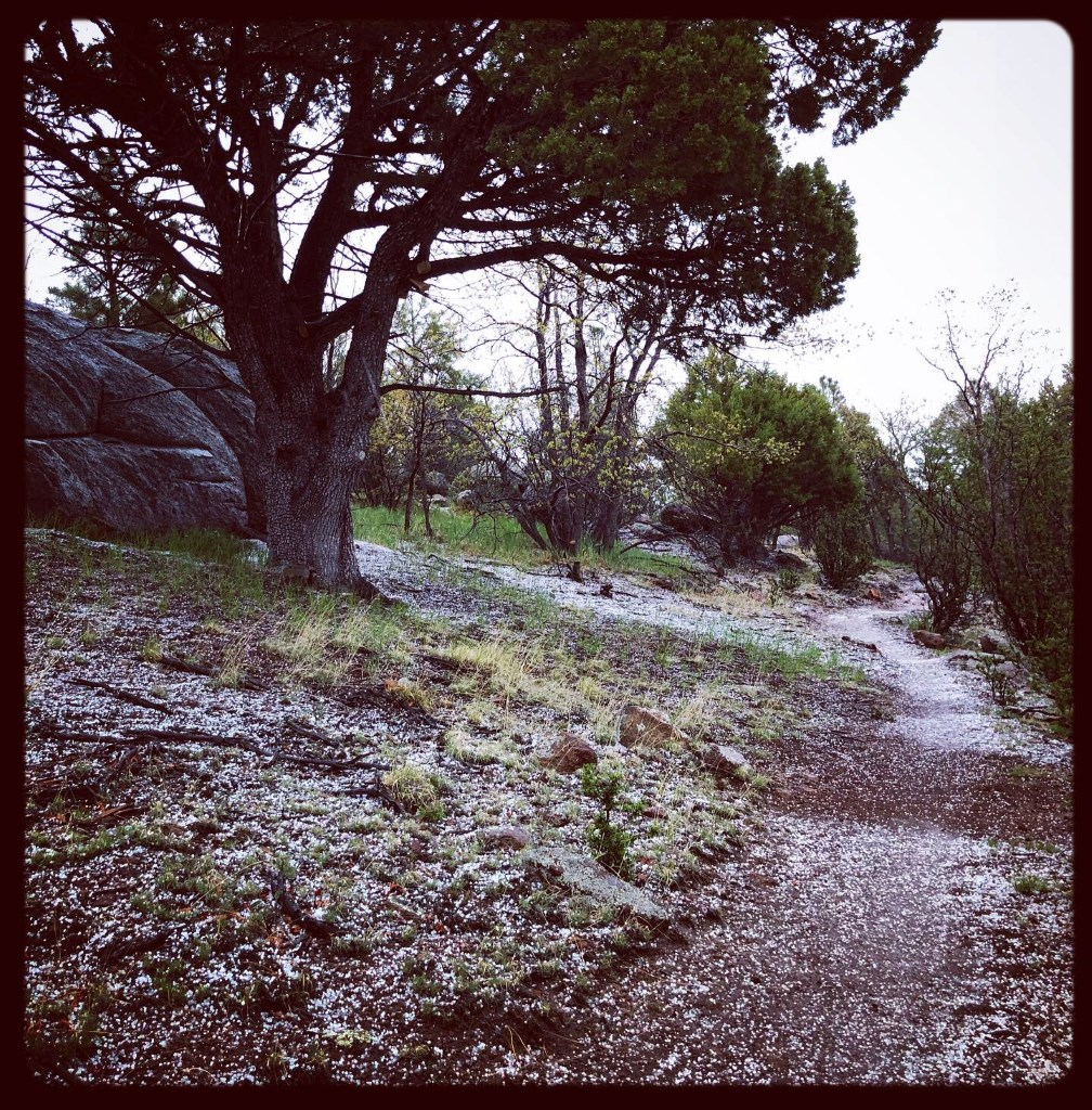 Cinco de Mayo-Little Elden Progress-le_hail.jpg
