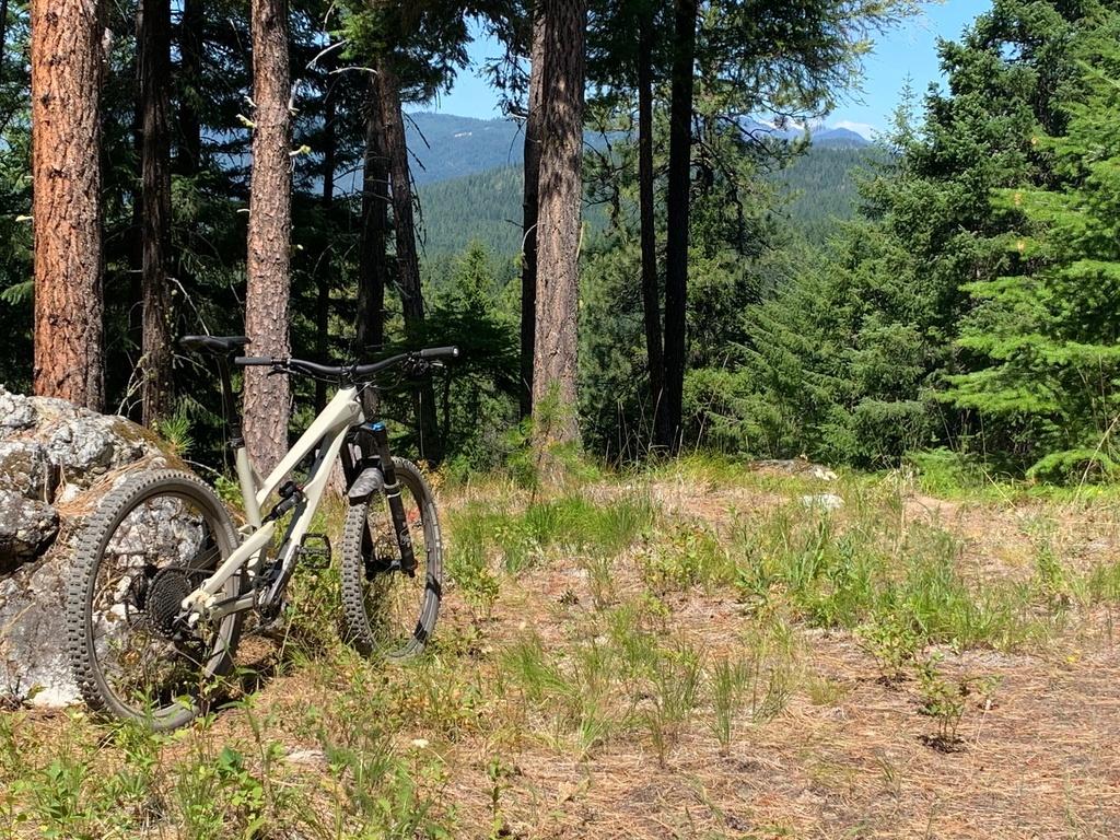 did you ride today?-leavenworth-mtb.jpg