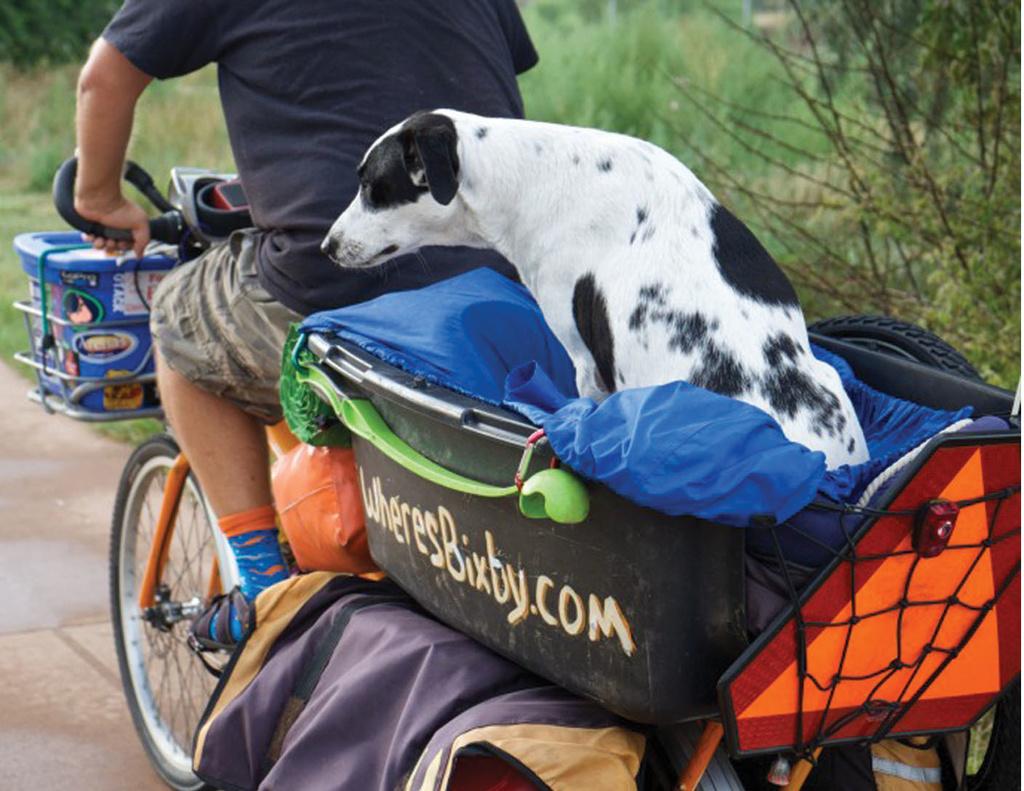 Taking the Dog - Surly Big Dummy-lft2.jpg