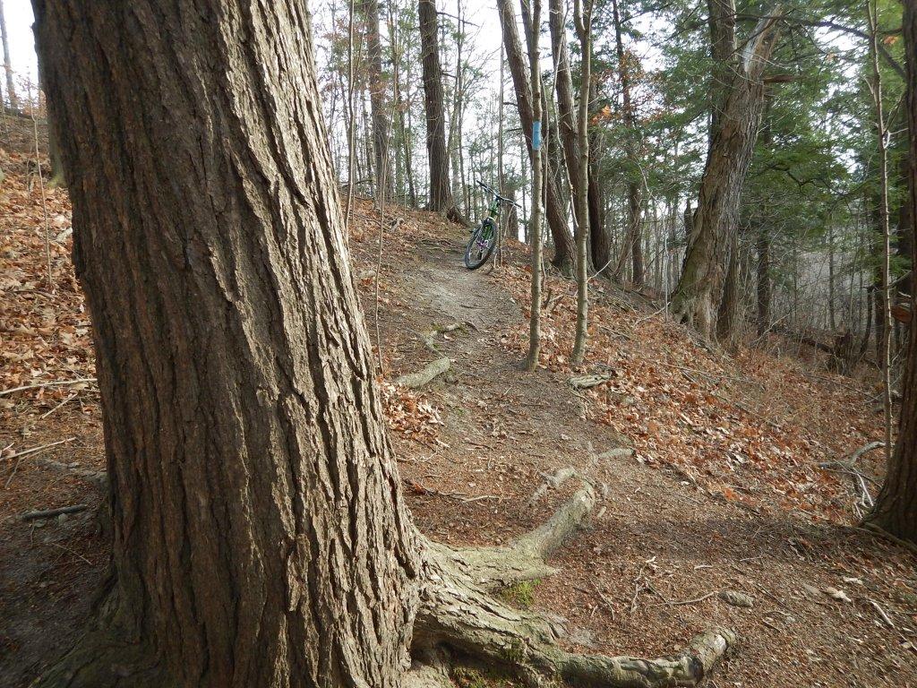 Local Trail Rides-lggfjq6.jpg